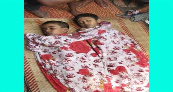 কুমিল্লার মনোহরগঞ্জে পানিতে ডুবে ২ ভাইয়ের মৃত্যু