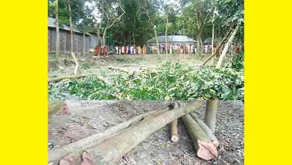 সিরাজগঞ্জ বেলকুচি উপজেলায় জমির বিরোধে ভাইয়ের হাতে ভাই খুন