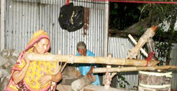 গরু কেনার সামর্থ্য না থাকায় ঘানি টানছেন মরিয়ম-লোকমান দম্পত্তি