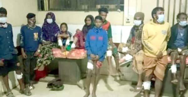 আশুগঞ্জেরতাজপুরে শিয়ালের কাণ্ড:এলোপাথারিকামড়ে অর্ধশত মানুষ আহত