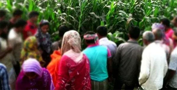 মিঠাপুকুরে ভুট্টা ক্ষেত থেকে কিশোরীর অর্ধগলিত লাশ উদ্ধার